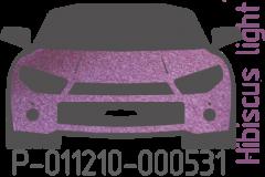 Hibiscus light P-011210-000531